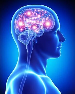 La collaborazione fra neuroni il segreto dei riflessi pronti