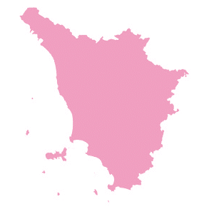 AIFI Toscana su Medicina 33 – TG2