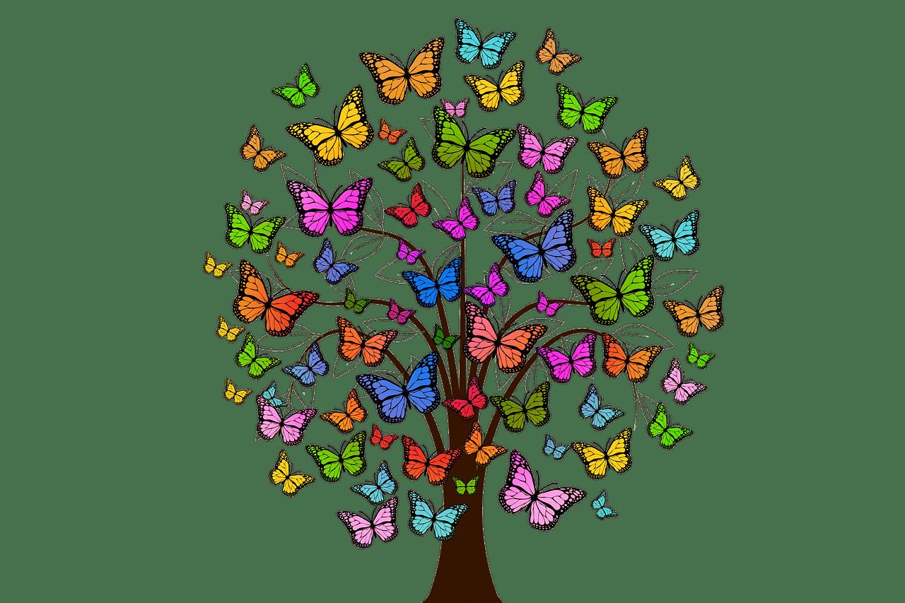 butterflies 2713343 1280