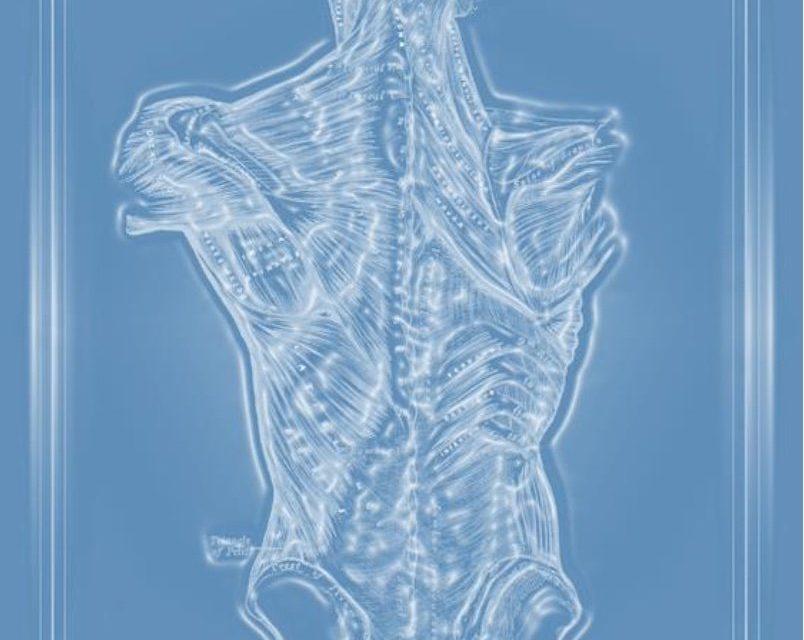 La manipolazione fasciale nel paziente con patologia neuromotoria: il webinar del 17/4